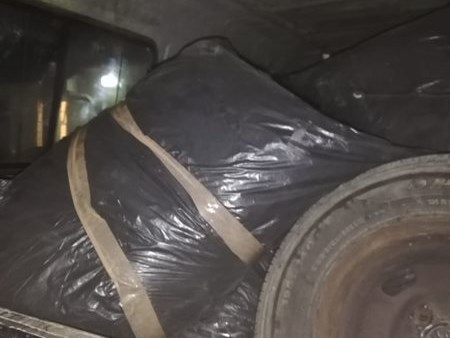 2 busted with dagga worth R965 000