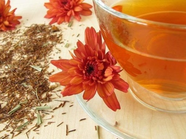 A rosy future for Rooibos