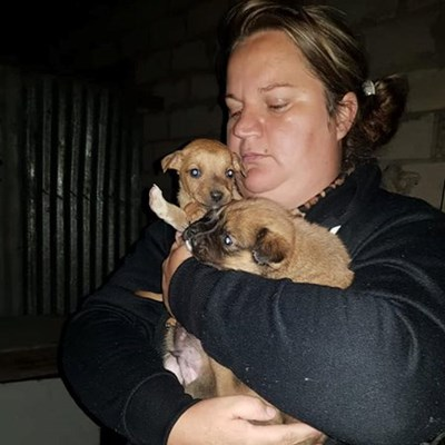 Brutal killing of dog in Thembalethu