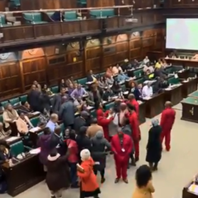 Chaos in parliament as scuffle breaks out