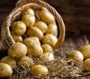 Three reasons to choose potatoes this festive season