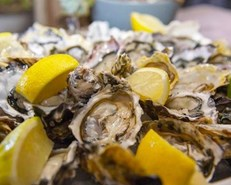 Knysna's Oyster remains open