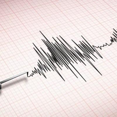 Earthquake 'no cause for panic'