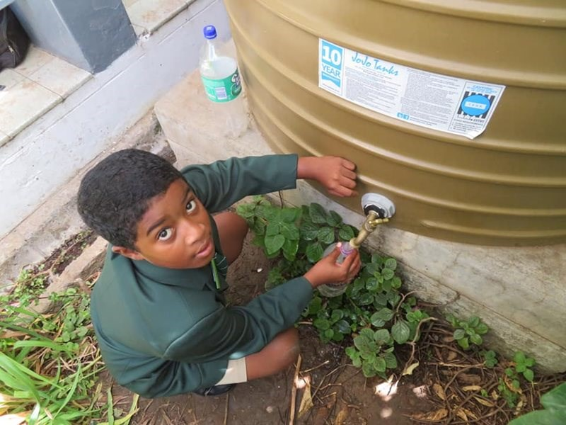 Local learners get water wise