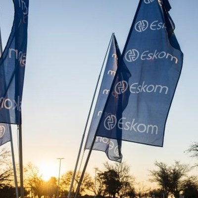 PIC speaks out on suggestions that it will rescue Eskom