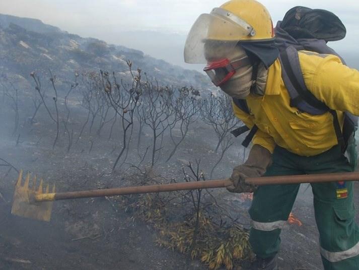 Eden fire update: Albertinia