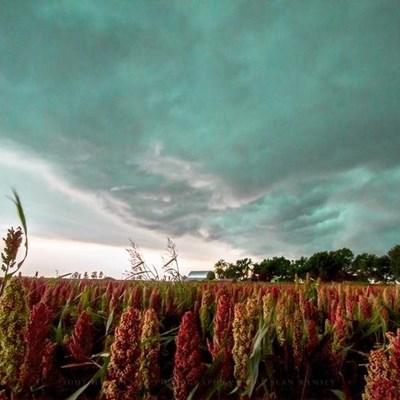 Below-average rainfall spells tough season ahead for Western Cape
