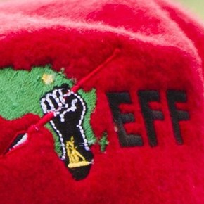 Parent assaulted as EFF members protest