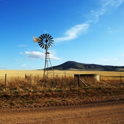 Parliament speaks out on farm murders