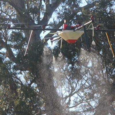 Karoo farmers take to the sky in efforts to curb invasive alien plants and increase water supply