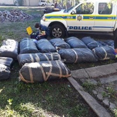 Dagga busts during joint efforts