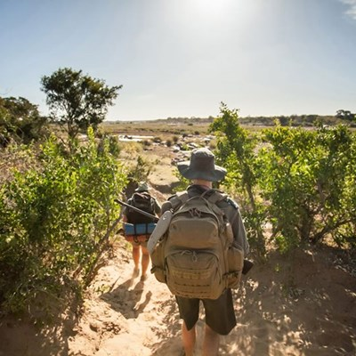Why a walking safari in the Kruger is a must