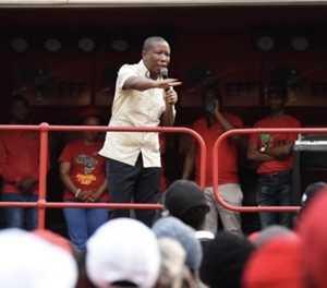 """""""No anti-Ramaphosa plot – but Cyril won't last anyway"""""""