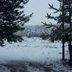 First snow of 2020 recorded as lockdown SA holds breath for 'coming storm' of winter