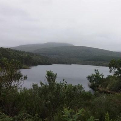 Garden Route Dam level at 95,12%