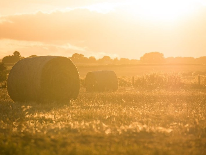 Industry voices opposition to new turn in land expropriation debate