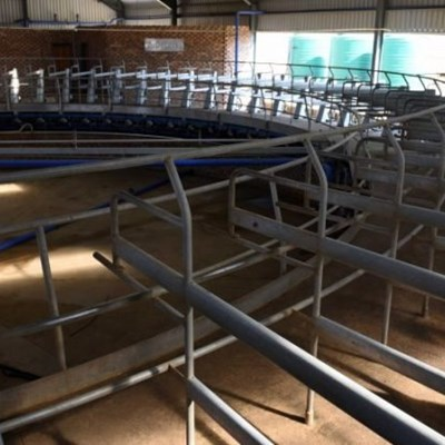 Vrede Dairy Project cost R1bn when R30m would have sufficed, Zondo commission hears