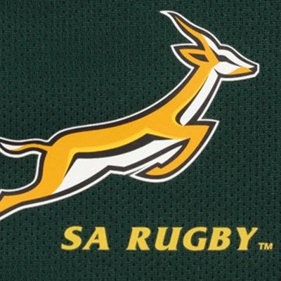 SA Rugby cut budget but Springbok Tests still planned