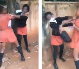 15-year-old girl in custody following viral bullying video
