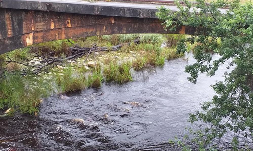Hessequa damvlakke styg