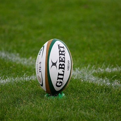 Bok alignment camps a 'step in right direction' – Nienaber