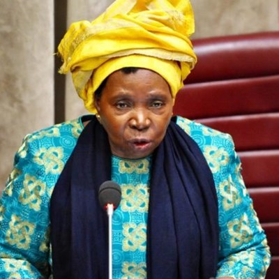 Dlamini-Zuma extends national State of Disaster by another month