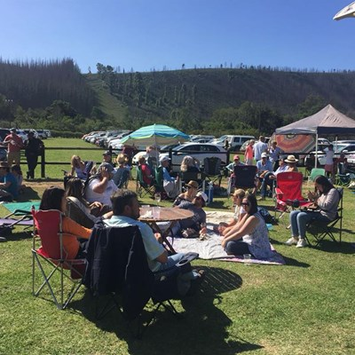 Time to celebrate the fruits of Plett wine region's labour