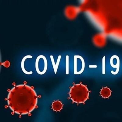 Covid-19 slaan Tuinroete hard