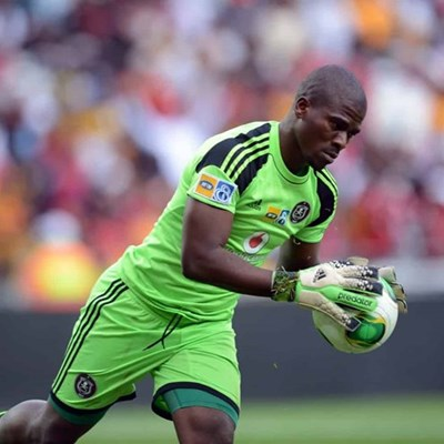 NPA thinks all witnesses are lying about Senzo Meyiwa's murder: Report