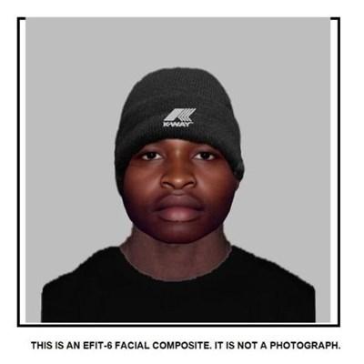 Help find rape suspects