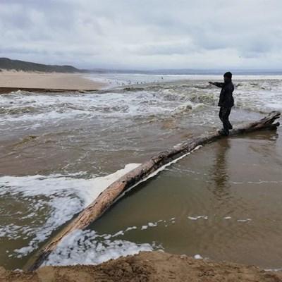 Latest on Hartenbos River Estuary