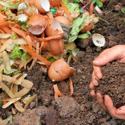 Municipality's pilot compost project