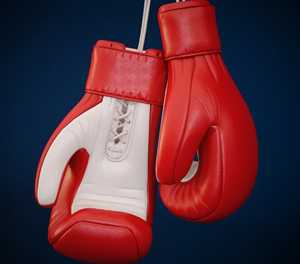 Themba boxing club shines