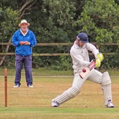 Village cricket on show again