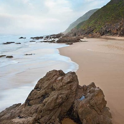 Glentana beach walk and clean-up