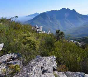 Botlierskop Private Game Reserve: A Garden Route Favorite