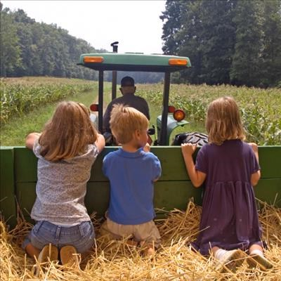 You Wouldn T Drive A Car Without Steering Wheel So Why Run Farm Business Plan