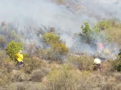 Beheerde brande nie toegelaat
