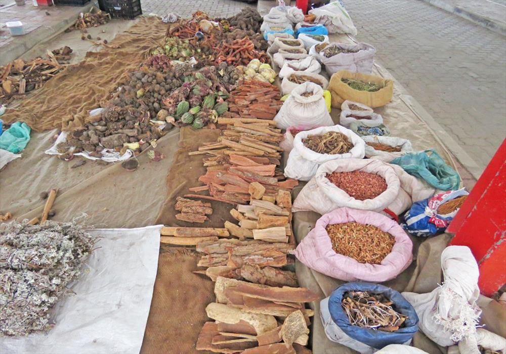 Image result for african medicine