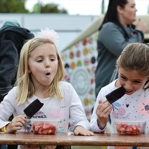 Fun for kids at Strawberry Festival