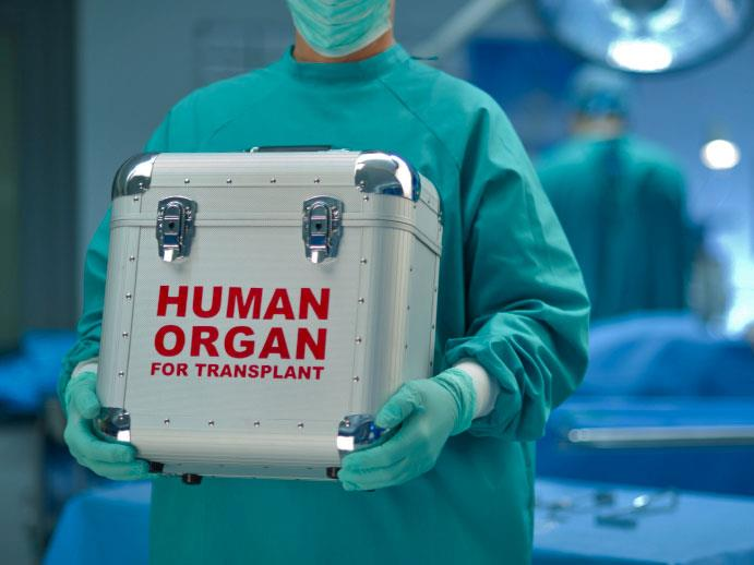 donor organ transplant Donate life california is the state authorized non-profit organization responsible for managing the organ and tissue donor registry our mission is to save lives by inspiring people to sign up with the state organ and tissue donor registry.